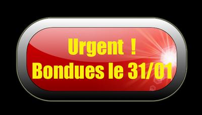 bouton Urgent copie